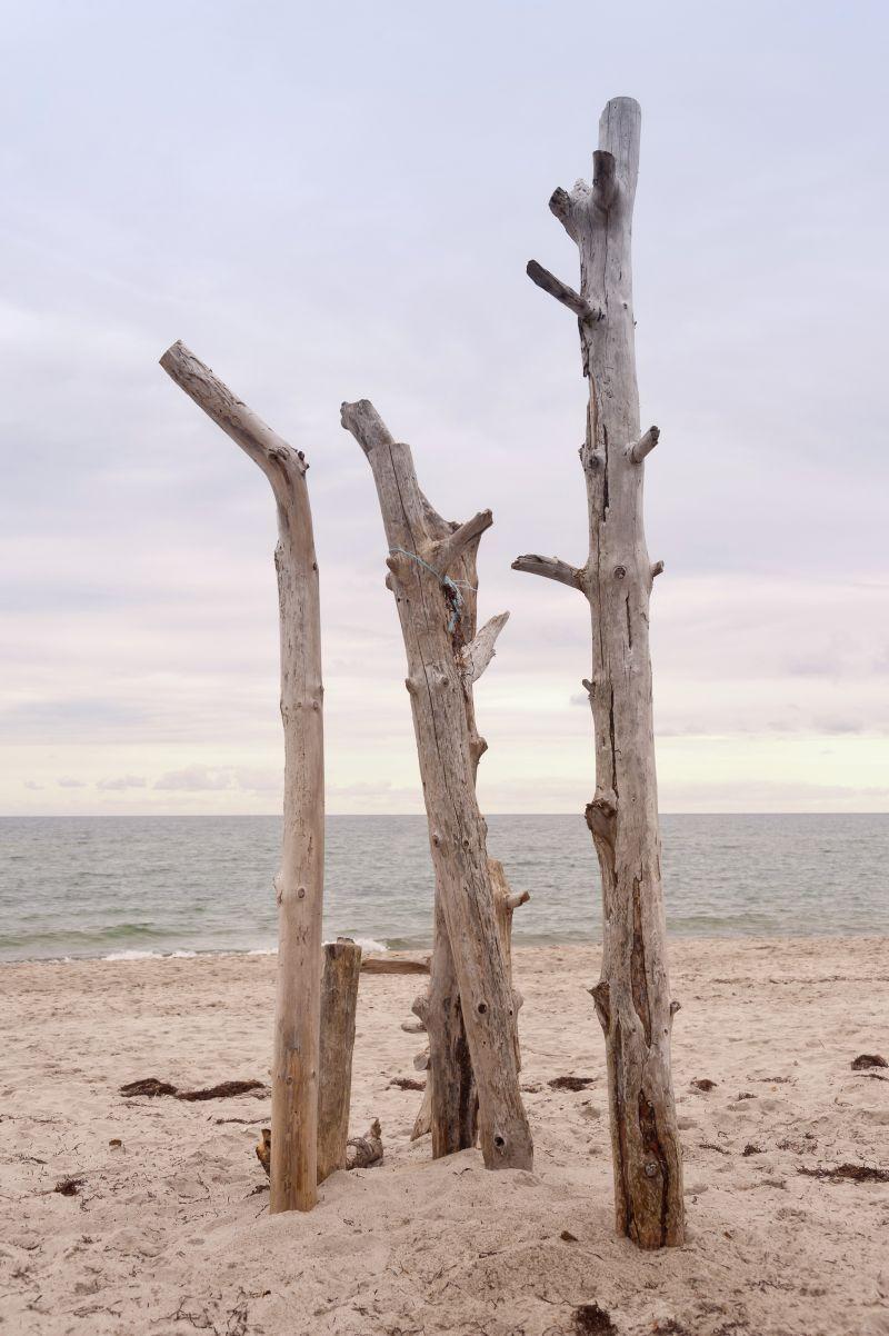 Stranden og kysten