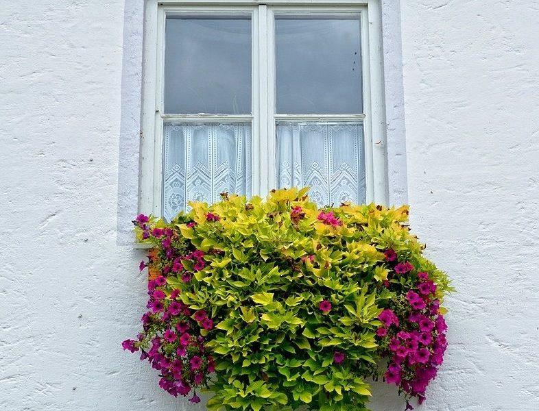 Pynt op udenfor med smukke altankasser med blomster